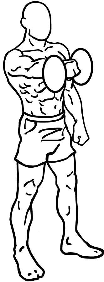 Oefeningen schouderspieren thuis